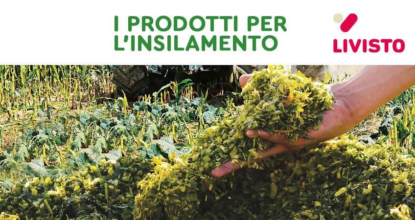 Agrivet   da Livisto gli additivi biologici per insilati BioCool Extra HC e SiloFerm HC